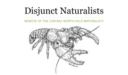 Central North Field Naturalists - Disjunct Naturalists